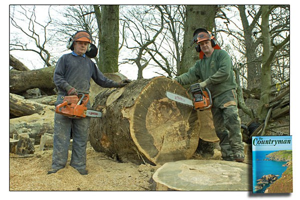 Village Woodman - Editorial Work