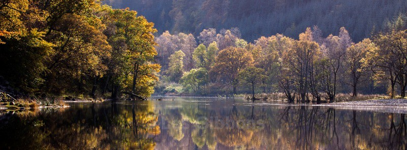 Loch Lubnaig autumn trees3 - Stirling and the Trossachs