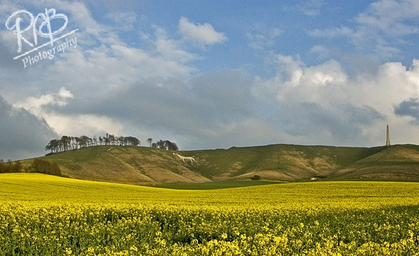 Cherhill White Horse - Wiltshire & West Country Landscapes