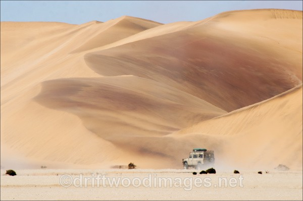 Namibia desert Living Desert dunes and vehicle A - Namibia, Southern Africa