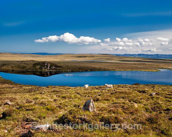 Views from Achiltibuie - Scottish Highlands