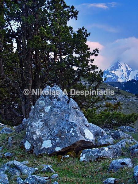 Στα Βαρδούσια Ι Vardousia Mt. - Κεντρική Ελλάδα I Central Greece