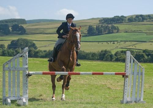 113 - Moniaive Horse Show 2008