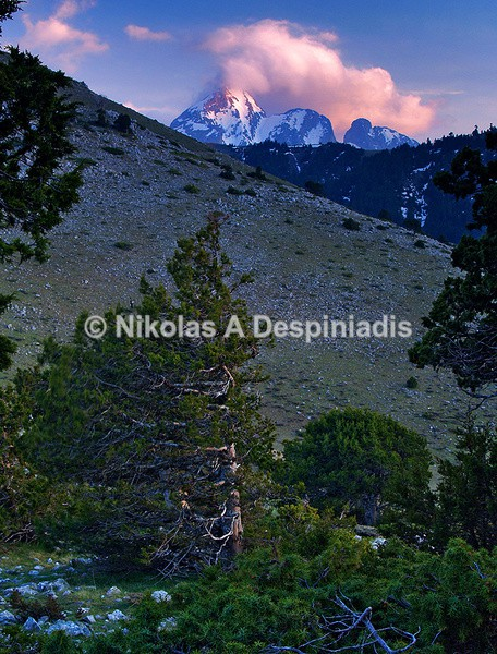 Bαρδούσια Ι Vardousia - Κεντρική Ελλάδα I Central Greece
