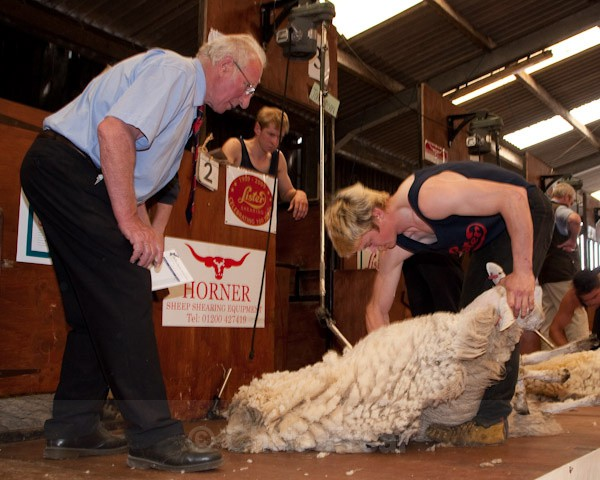 38 - Shearing Competition