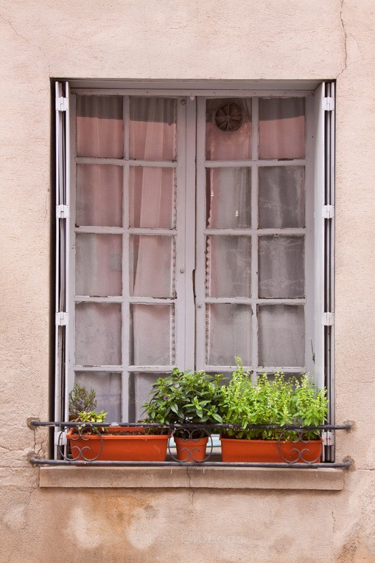the window - Toulouse