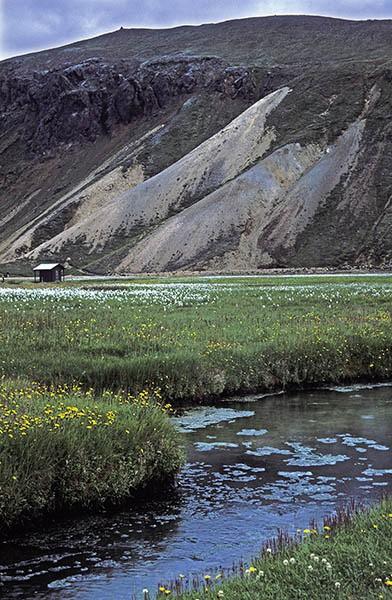 Landmannalaugar - Stream - South and Central highlands