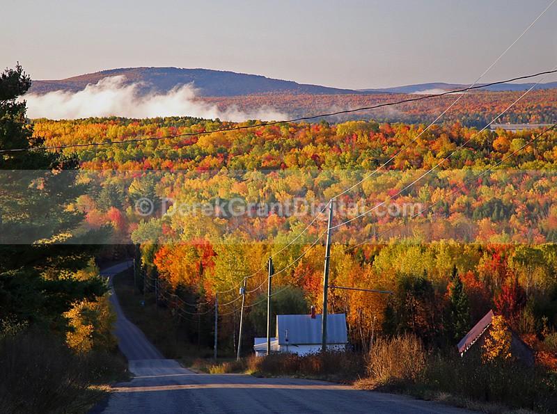 Autumn Foliage New Brunswick Canada Maine USA - New Brunswick Autumn Foliage