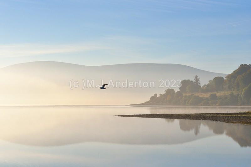 Blessington Lake - Co.Wicklow.