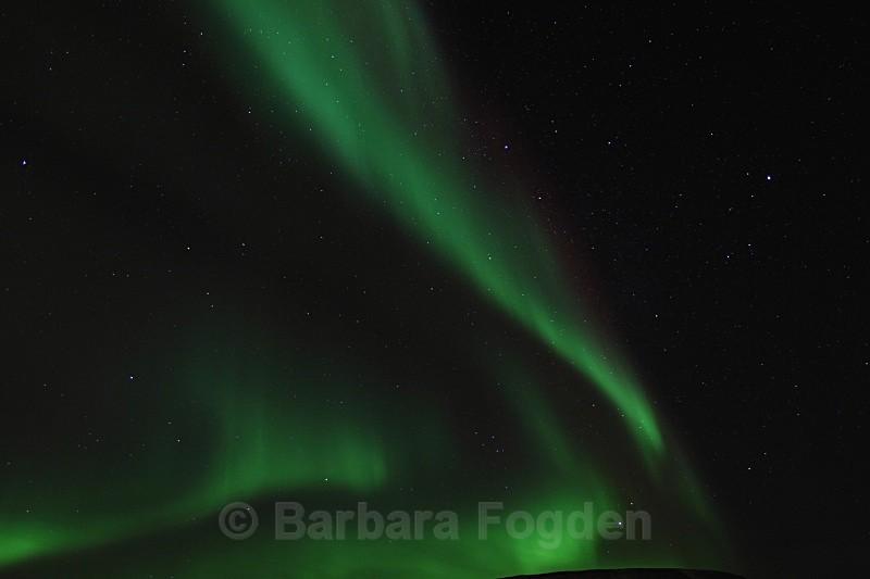 Northern light in Adventdalen 4901 - Polar night