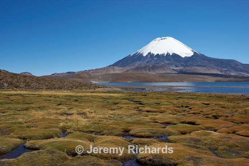 Parinacota Volcano - Altiplano of North-East Chile