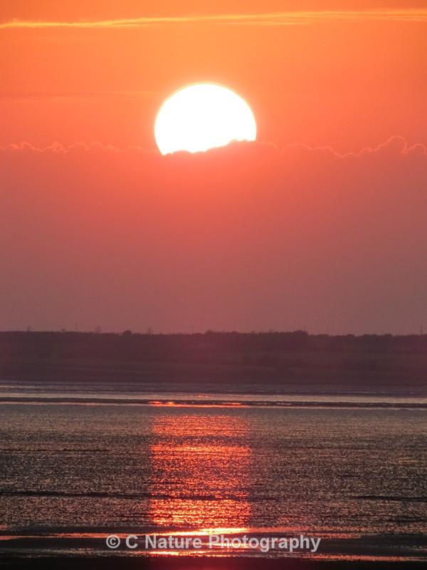 Sun Glow - Sunsets
