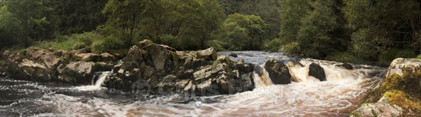 Weir in Ae Forrest - Panoramics