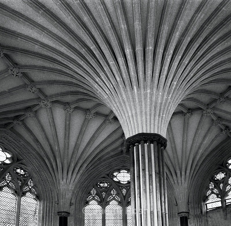 Wells Cathedral Chapter House Columns - Images from England