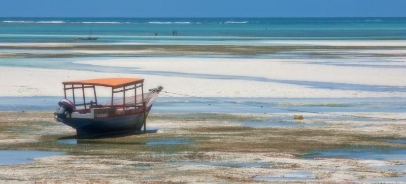 Pongwe beach - Zanzibar