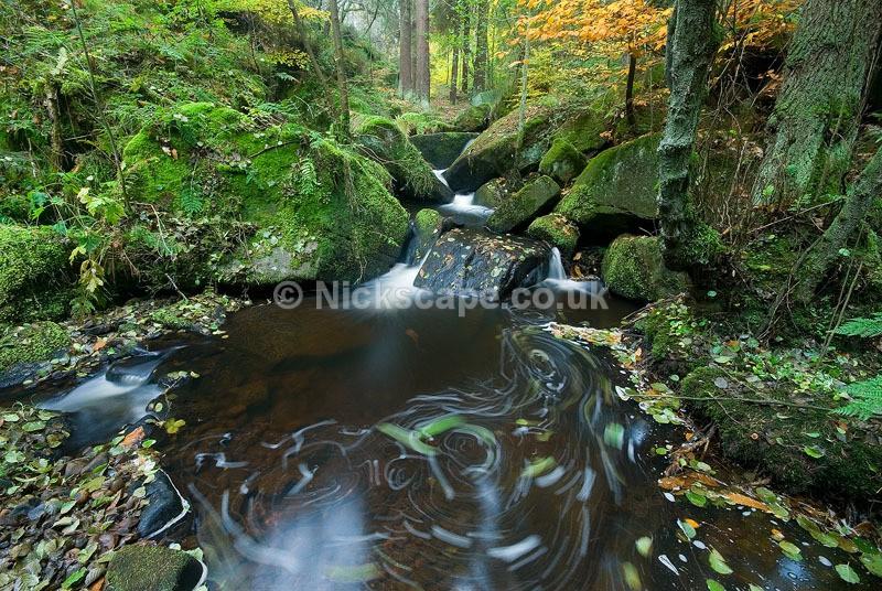 Wyming Brook - Derbyshire162 - Peak District Landscape Photography Gallery