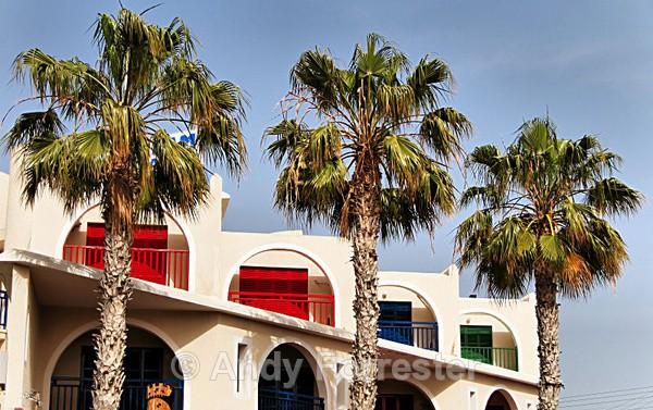 RGB - Cyprus 2008