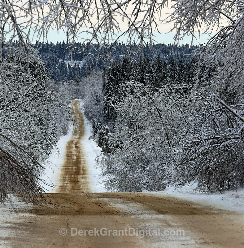 Cold Road - The Great Ice Storm of 2013