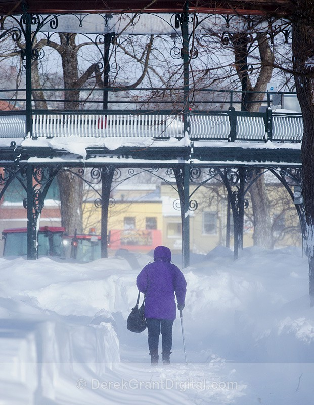 King's Square Saint John NB Blizzard February 2015 - Winterscape