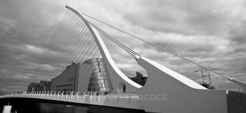 Bridge and Conference Centre - Shapes and Skies