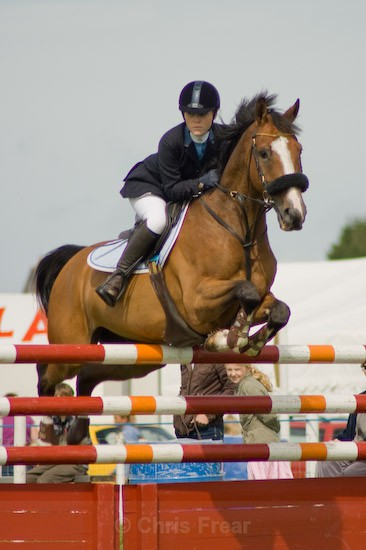 6 - Equestrian Photography
