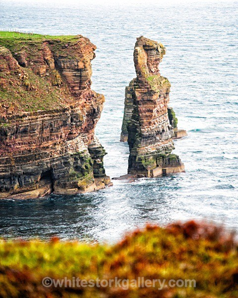 Sea Stack at John O Groats - Scottish Highlands