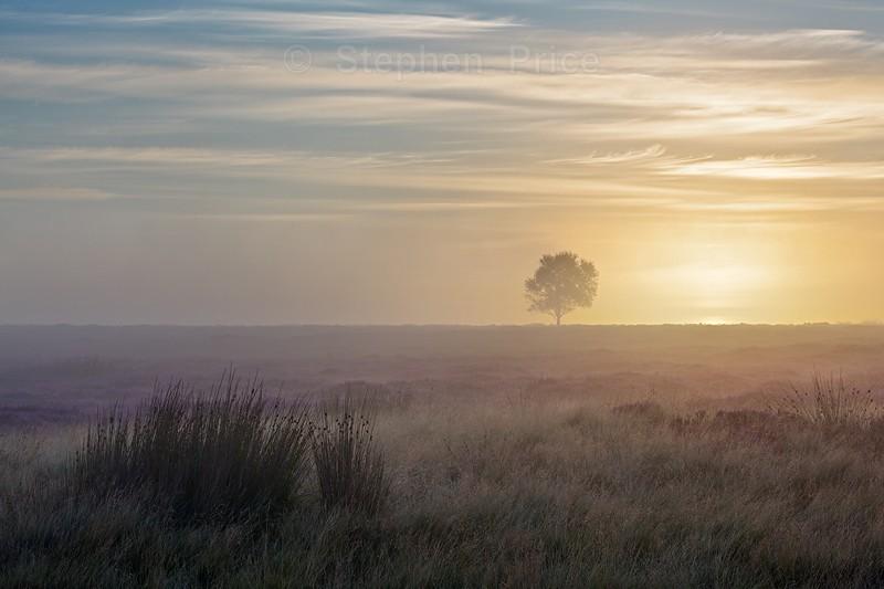 Big Moor Sunrise | Derbyshire Peak District Sunrise Photo