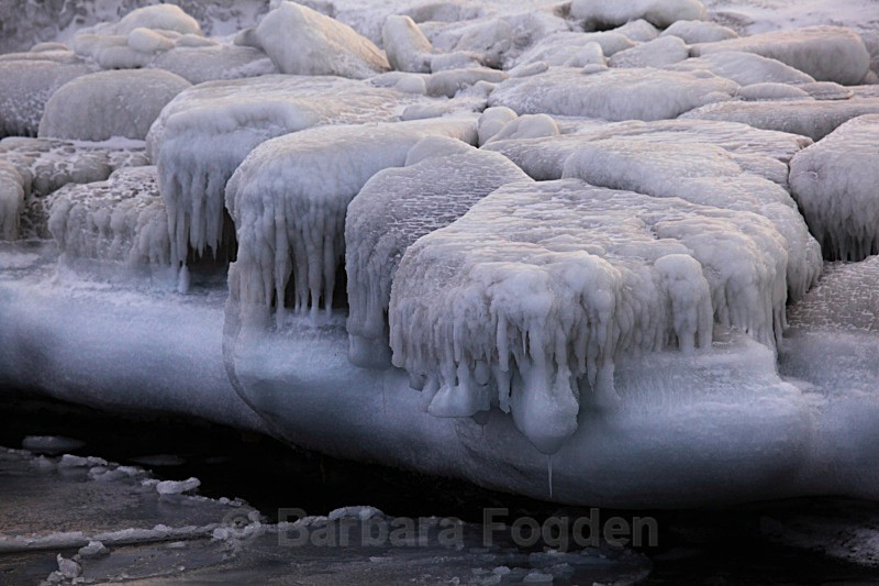 Sea ice 9575 - Winter in the daylight
