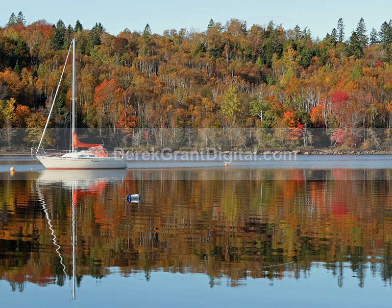 Sailboat in Autumn New Brunswick Canada - Boats