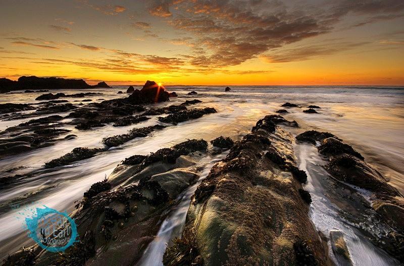 Burst of Colour - Seascapes