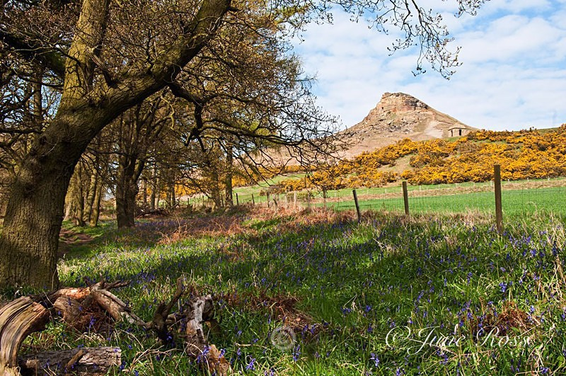 Roseberry Topping, Great Ayton - North-East England