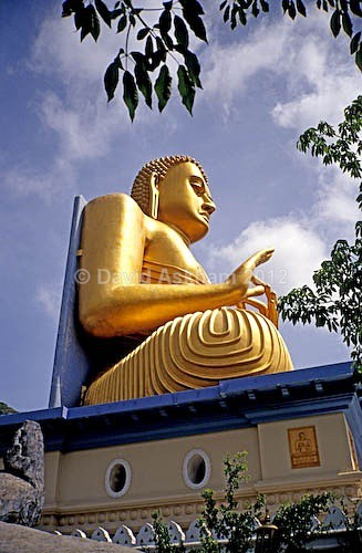 Golden Buddha - Travel & Landscape