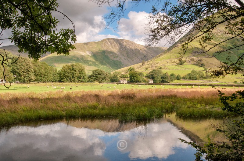 Brotherwater View - Lake District