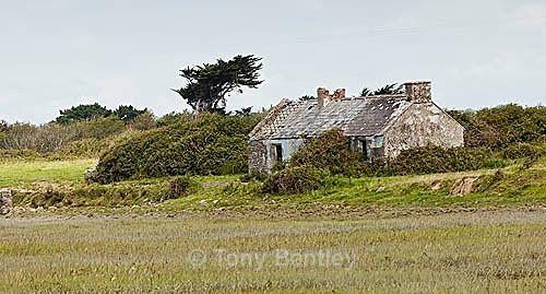 Abandoned cottage, Burren National Park - Ireland