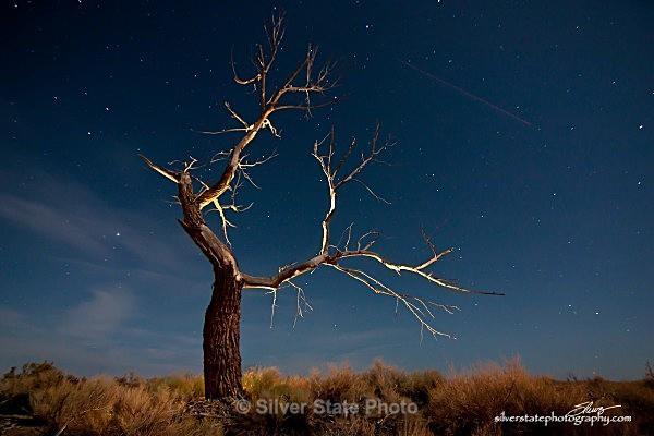 IMG_2759-a-web - Night Photography