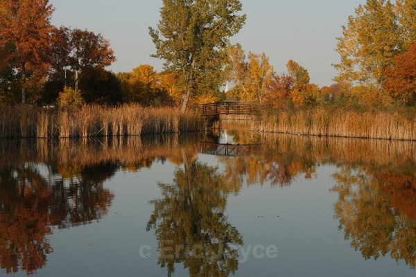 Fall reflections 2012 - Seasonal Collection 2012