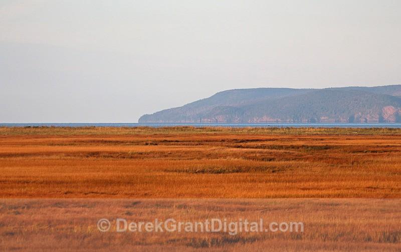 Salt Marsh, Cape Enrage - New Brunswick Landscape