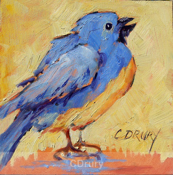 BlueBird - Colorful Critters