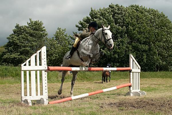 19 - Moniaive Horse Show 2010