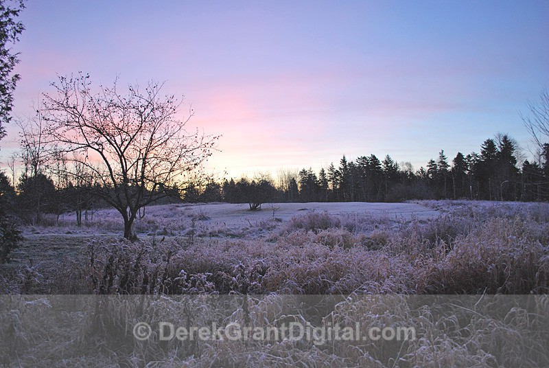 Frosted Dawn - Sunset/Moonrise