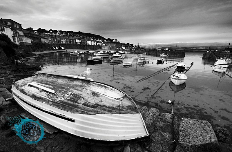 Mousehole B&W - Black and White