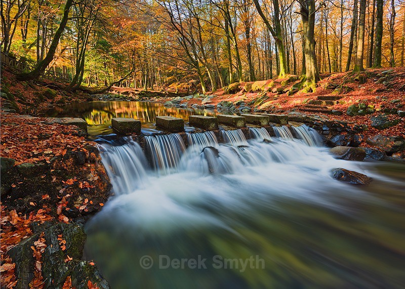 Fast Flowing Shimna River - Tollymore Forest park- Newcastle