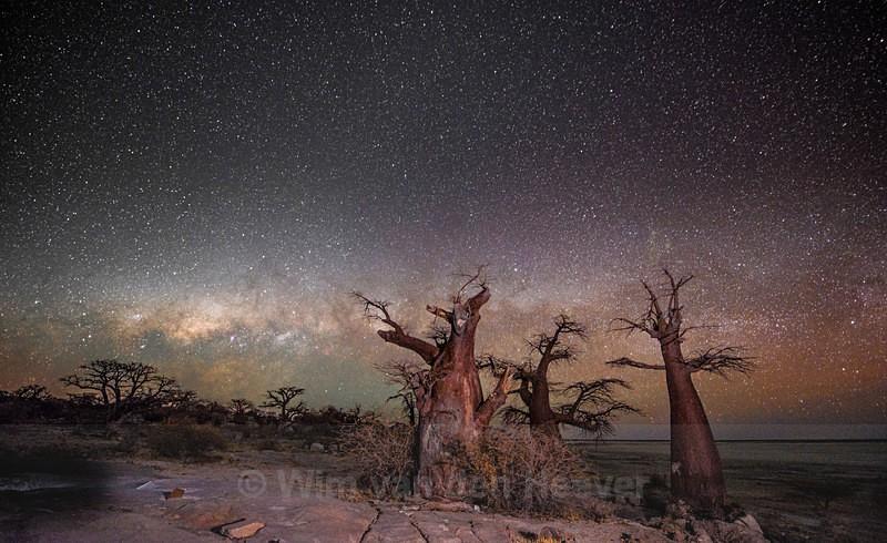 - Landscape by Night