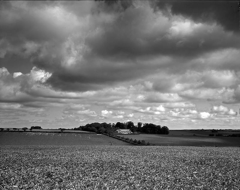 Near Kings Lynn Norfolk England - Monochrome