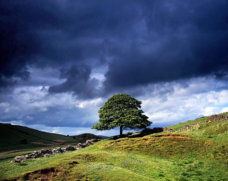 Goyt Valley The Peak District - England