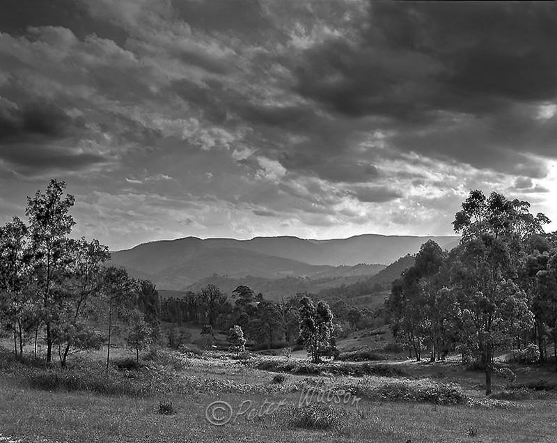 Blue Mountains NSW Australia - Monochrome