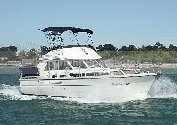 090501 BELLEVUE IMG_5736 - Motorboats - Hardtop