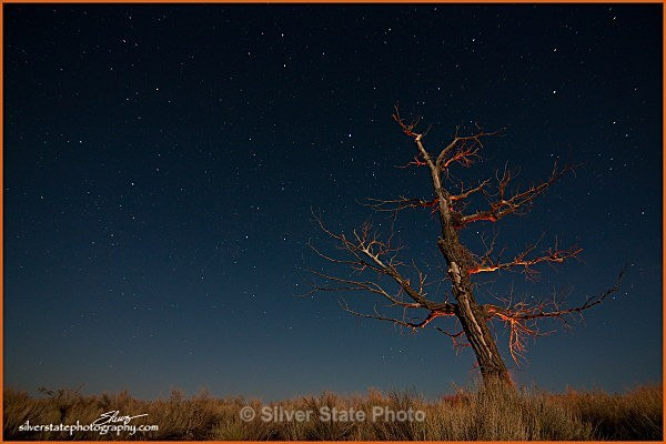 IMG_2810-a-web - Night Photography