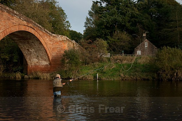 mnaa-1398 - Flyfishing Photography