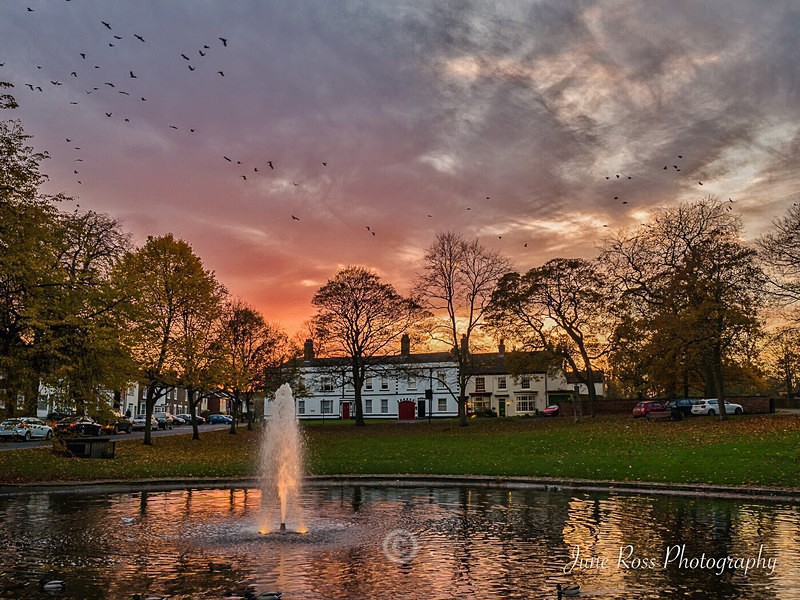 Sunset at Norton Duck Pond - North-East England